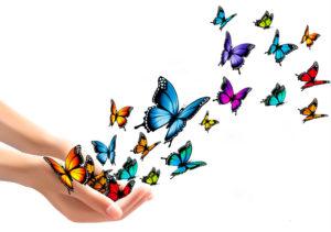 butterflies1 300x211 - Home